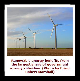 energy subsidies