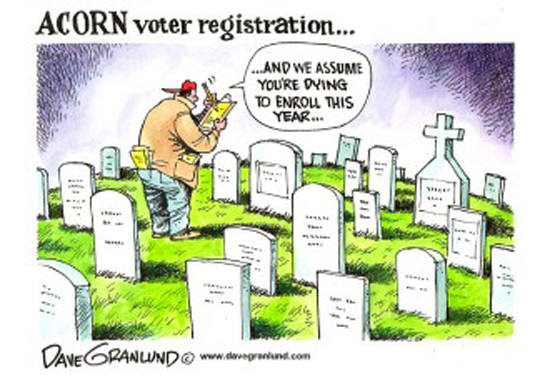 acorn-voter-fraud